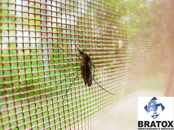Telas mosquiteiras - brasilia df (61)3547-0778/ 99878-9700