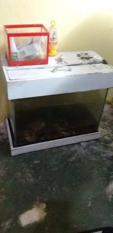 Vende-se esse aquário de médio porte 50 litros