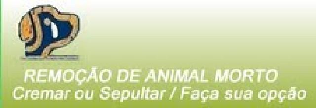Crematório de animais sp