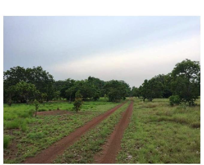 1078 alq. planta 700 aberto 350 7 km de rio cercada santa m.