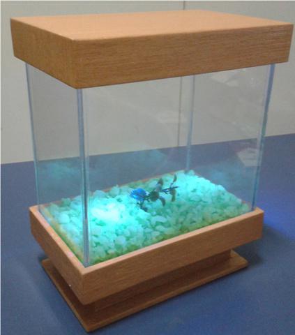 Aquario beteira 4 litros - com iluminação - lançamento
