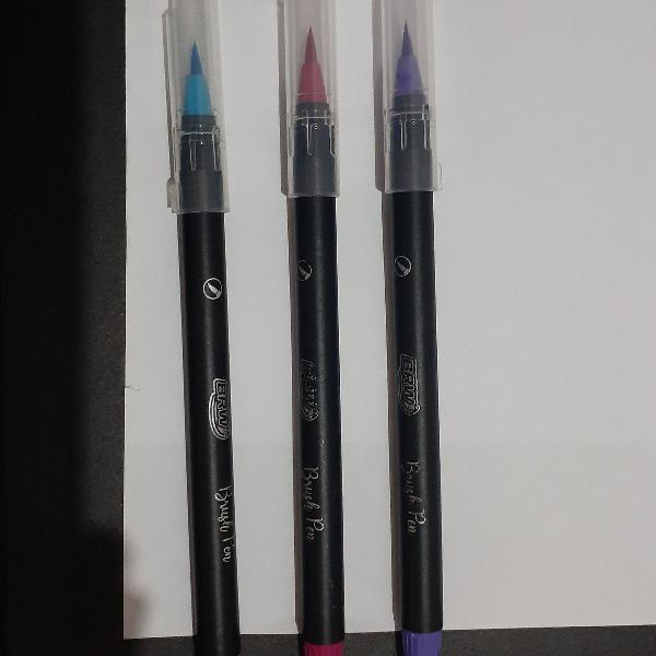 Conjunto de brush pen brw