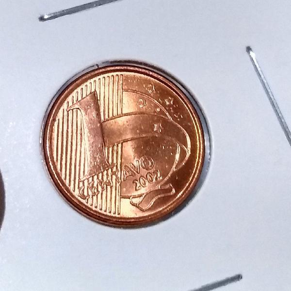 Raríssima moeda flor de cunho
