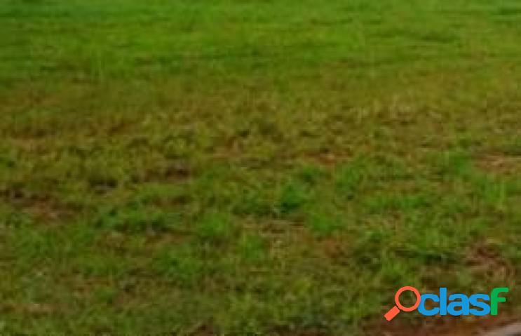 Terreno - venda - lenã§ã³is paulista - sp - jardim village