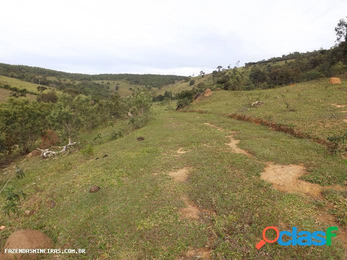 Fazenda para venda em itatiaiuçu / mg no bairro zona rural