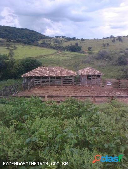 Fazenda para venda em passa tempo / mg no bairro zona rural