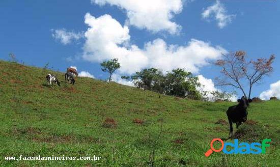 Fazenda para venda em alfredo vasconcelos / mg no bairro zona rural