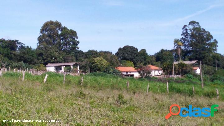 Fazenda para venda no bairro fazenda de café