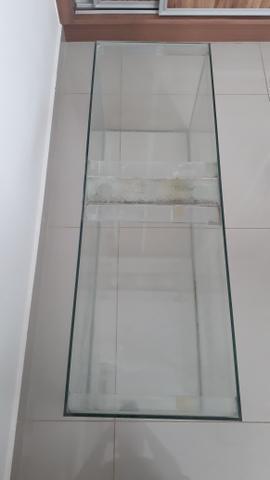 Aquario de 1,00m x 0,40m x 0,35m e 7 kg de subtrato
