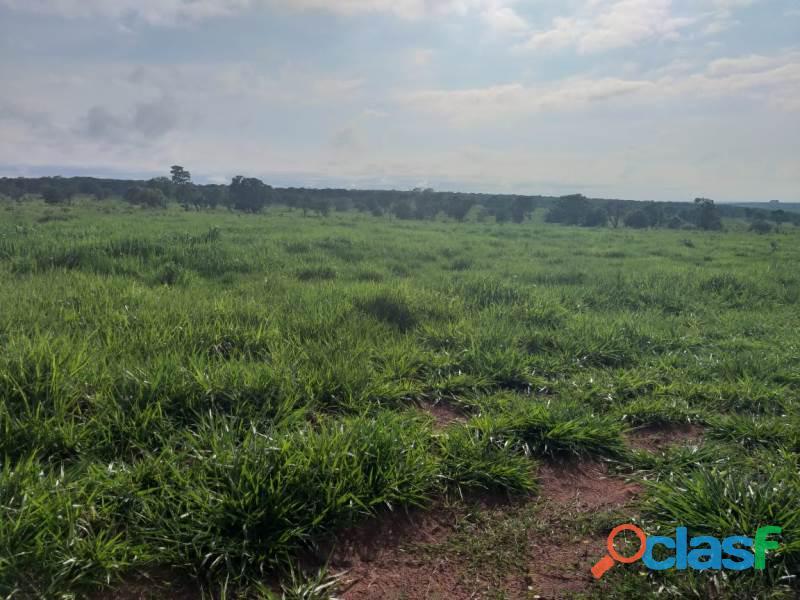 909 Alq. P/ Agricultura Estuda Prazo e 40% Permuta Em SP Com Entrada Mineiros GO