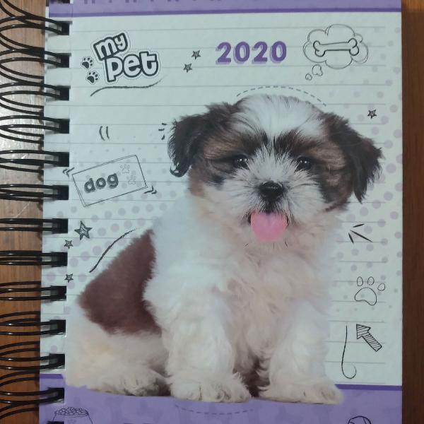 Agenda diária cachorro my pet