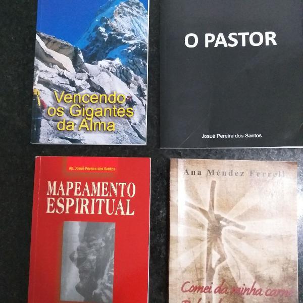 Livros cristão / evangélico - diversos títulos