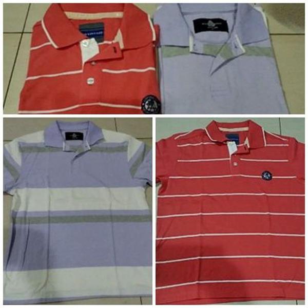 Kit promoção 2 lindas camisas polos
