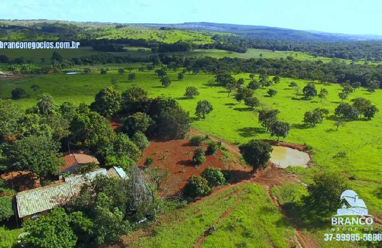 Fazenda em dores do indaiá (160 hectares) ideal para
