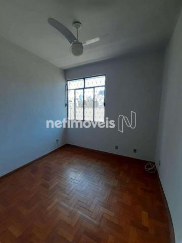 Apartamento para alugar com 2 dormitórios em nova floresta,