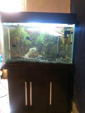 Vendo ou troco por algo do meu interesse aquário completo
