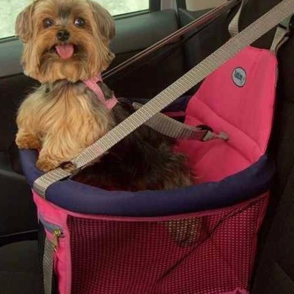 Cadeirinha de transporte para cães