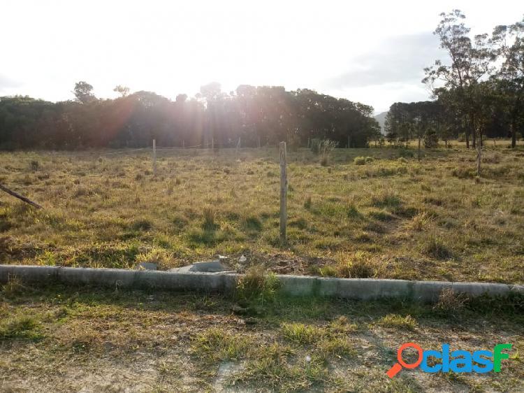 Terreno - venda - garopaba - sc - povoado de campo d/'una