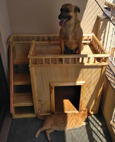 Casas personalizadas de madeira para gato, cachorro, coelho.