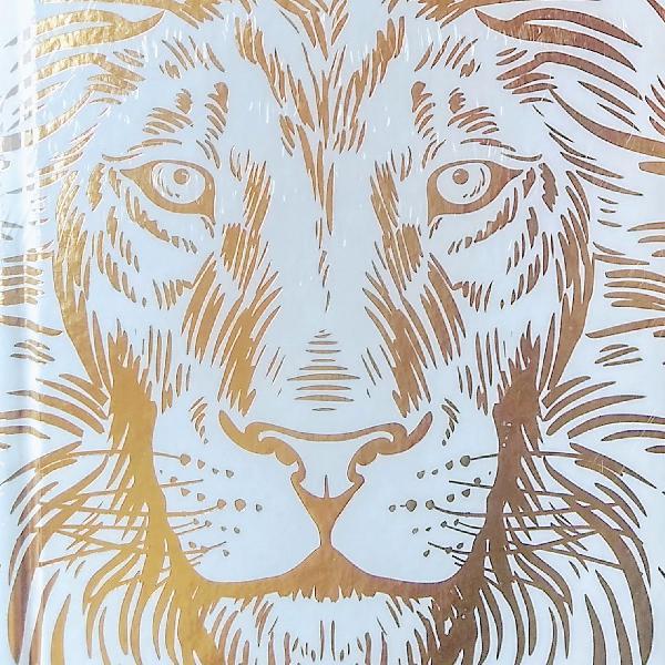 Bíblia leão