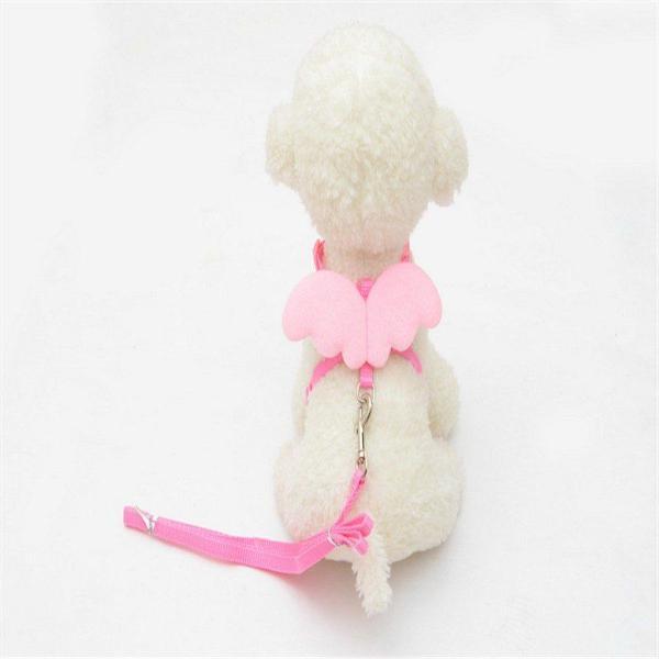 Coleira cachorro/ gato pet com asas de anjo rosa ou azul