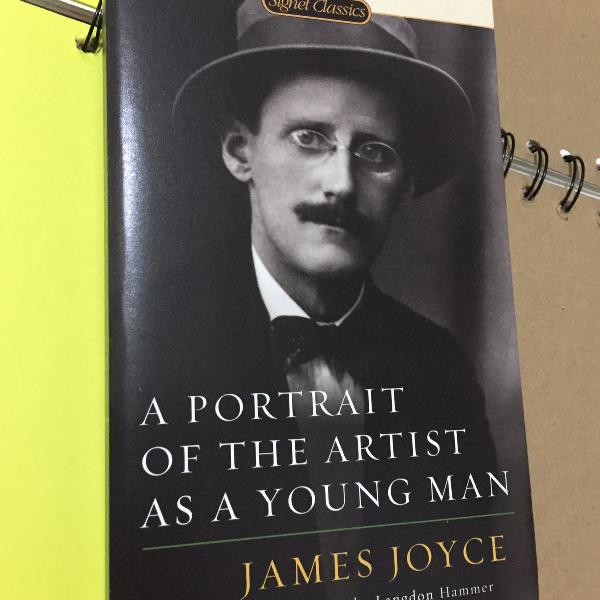 Livro portrait of the artist as a young man de james joyce