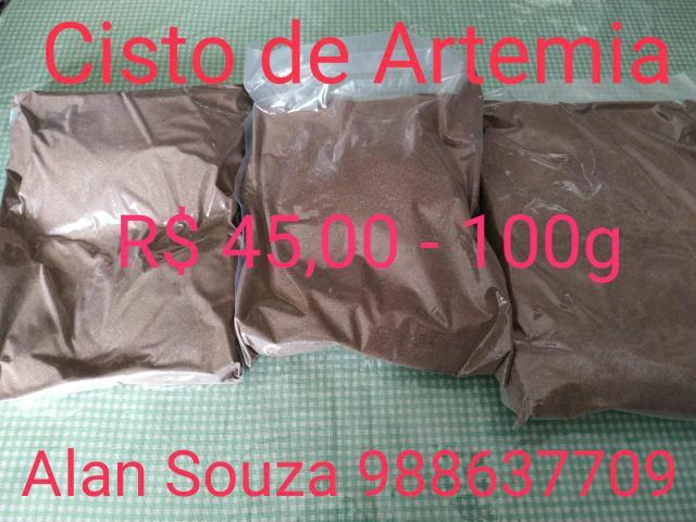 Cisto de artemia salina