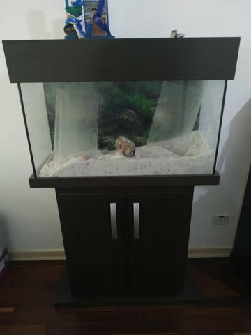 Lindo aquário com móvel completo 120l;