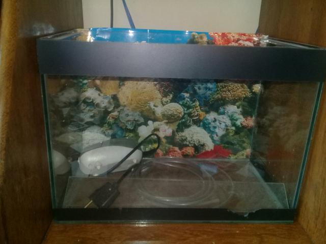 Vendo aquário com bombinha