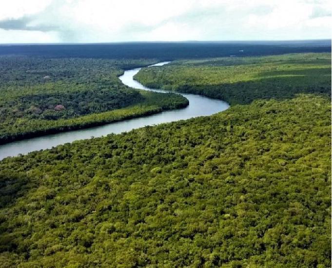 Fazenda à venda com 4500 hectares em brasnorte mato grosso