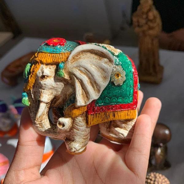 Elefantinho das indias