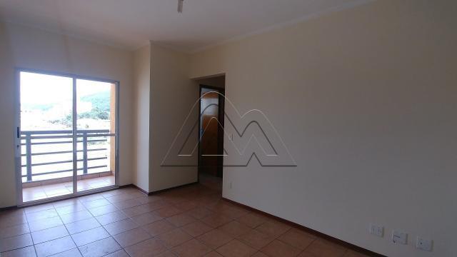Apartamento para alugar com 2 dormitórios em vila nova,