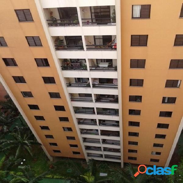 Apartamento alto padrão para venda - centro