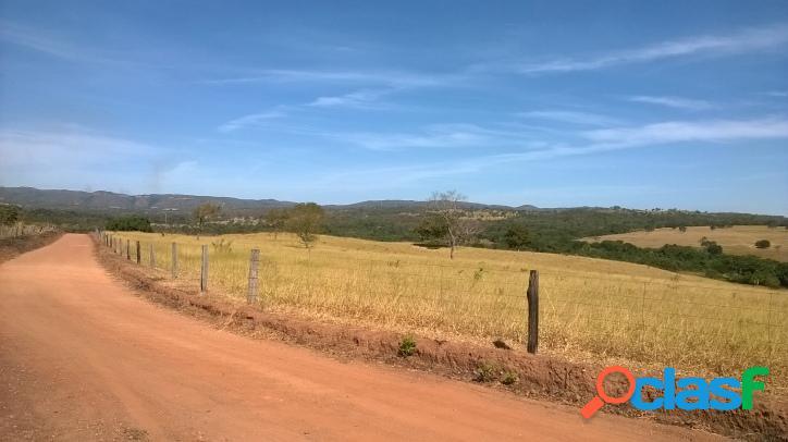 Fazenda de 35 alqueires dupla aptidão em mairipotaba
