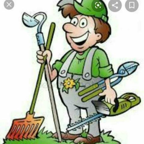 Jardineiro serviço geral. 62. * whatsapp