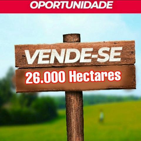 26.000 hectares em chapadinha/ urbano santos *