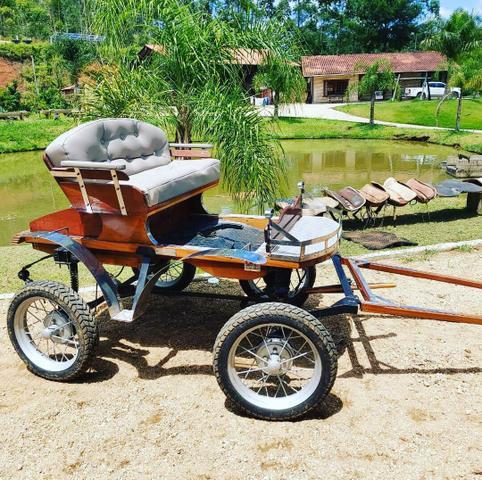 Cabriolet carroça charrete