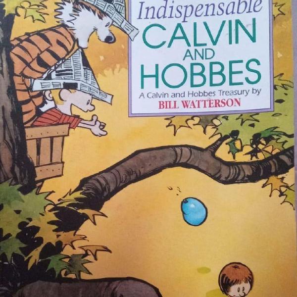 Calvin e haroldo em inglês