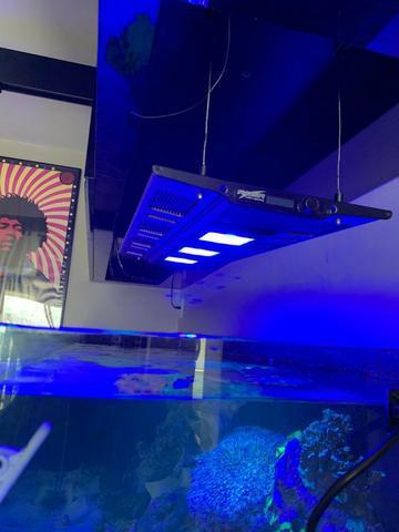 Maxspect razor 180w +suporte vidro + suporte teto