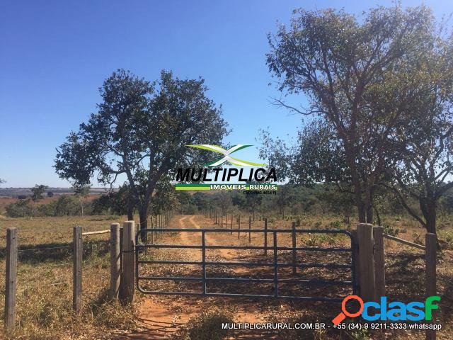Chácara uberlândia 2 hectares, 20.000 m² escritura, financiamento próprio