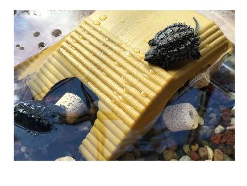 2pcs réptil tartaruga flutuante cais, plataforma de basking