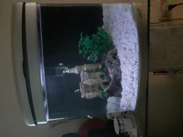 Aquário marinho/doce jad boyu 30 litros