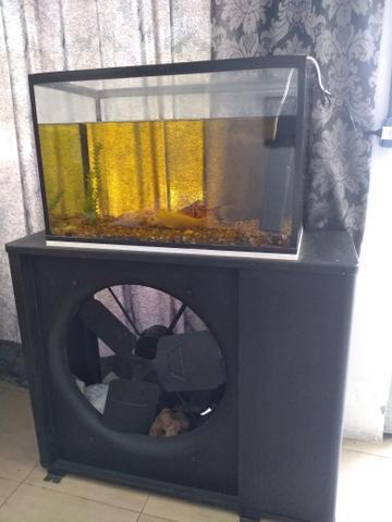 Barbada aquário 160 litros com lâmpada uv e bombinha 110v