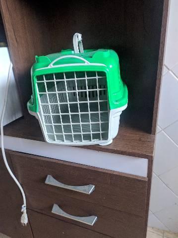 Caixa para gato e cachorro
