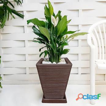 1 vaso + prato polietileno p/ plantas flores jardim q 45x35