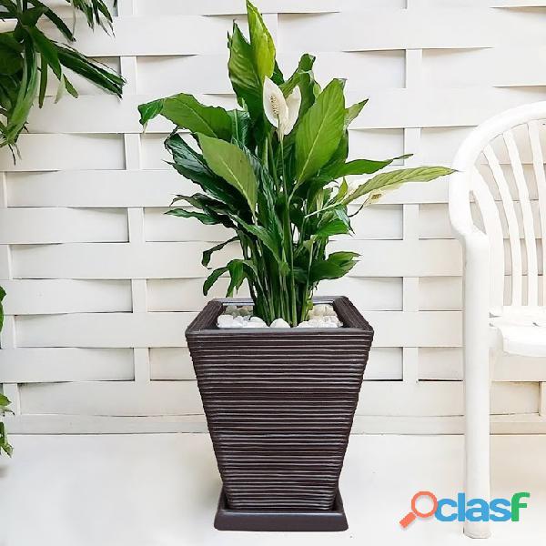 1 Vaso + Prato Polietileno P/ Plantas Flores Jardim Q 45x35 5