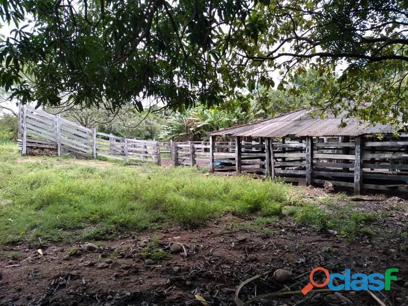 150 Alqs Plana Região De Lavoura Lizarda TO 1