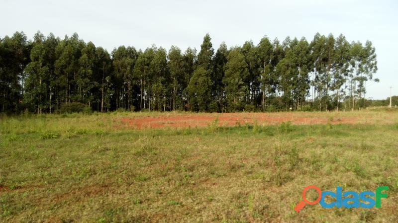 Vende se Terreno Industrial de 26.000 m2 Vera Cruz no trevo da BR 287 2