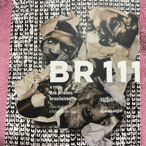 Br 111- a rota das prisões brasileiras