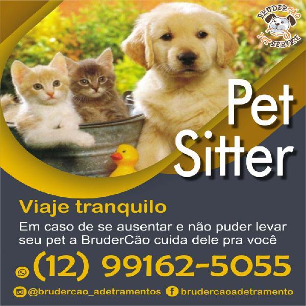 Babá para gatos e cachorros animal estimação são josé